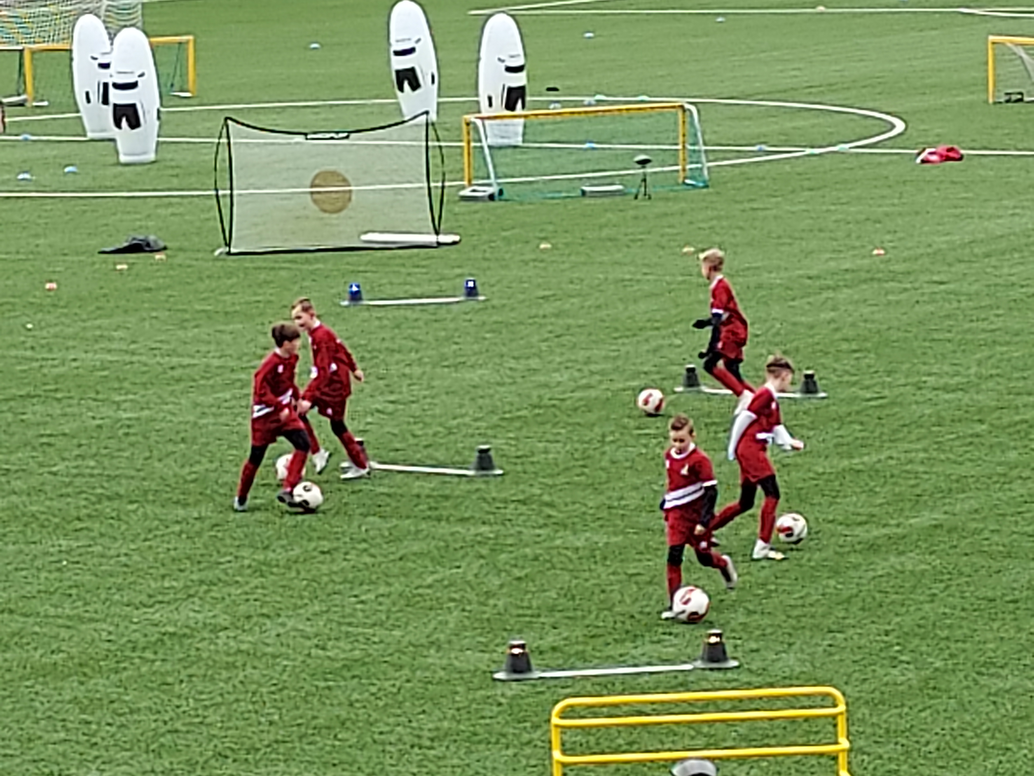 Training DOVO